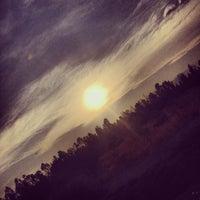 Photo taken at Foresta de Zapallar by Christofer V. on 1/14/2014