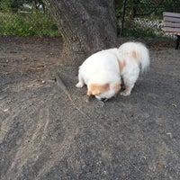 Photo taken at Baron Cameron Dog Park by Nancy H. on 7/21/2013