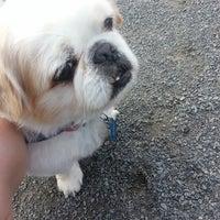 Photo taken at Baron Cameron Dog Park by Nancy H. on 6/14/2014