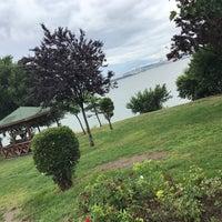 Photo taken at Avcılar Paşaeli Parkı by Özge B. on 6/19/2017