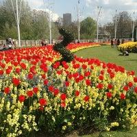 Photo taken at Buckingham Palace Gardens by Jennifer G. on 5/6/2013