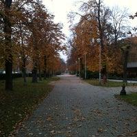 11/18/2012 tarihinde Orsolyka H.ziyaretçi tarafından Gesztenyéskert'de çekilen fotoğraf