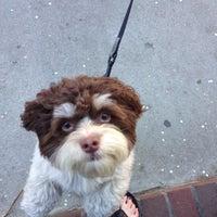 Das Foto wurde bei Polka Dog von Rachel am 5/7/2013 aufgenommen