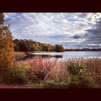 Photo taken at Töölönlahti / Tölöviken by Ossi T. on 10/11/2012