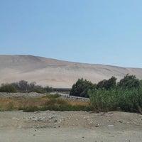 Das Foto wurde bei Valle De Lluta von Juan g. am 2/21/2013 aufgenommen