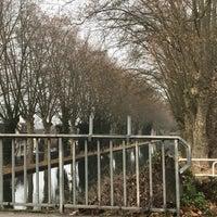 Photo taken at Canal du Rhône au Rhin by Joupi M. on 12/13/2016