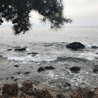 3/17/2018 tarihinde Zerrin K.ziyaretçi tarafından Kalpazankaya Plajı'de çekilen fotoğraf