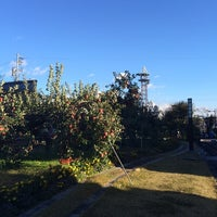Photo taken at りんご並木 by natural on 11/2/2014