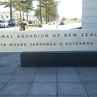 Photo taken at National Aquarium of New Zealand by K S. on 3/21/2016