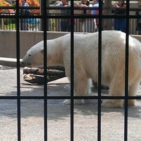Photo taken at Polar Bear Museum by K S. on 6/8/2013