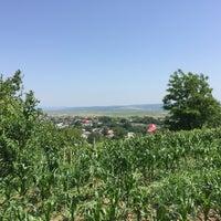 Photo taken at Săucești by Cali S. on 6/29/2017