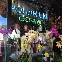 Photo taken at 6th Ave Aquarium and Flowers by Nina on 11/9/2012