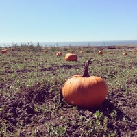 Photo taken at Bob's Pumpkin Patch by mikey r. on 10/12/2014