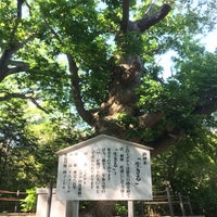 Photo taken at 温泉神社御神木 by けんけん み. on 6/10/2016