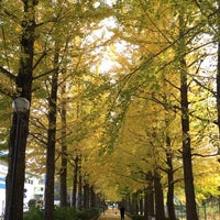 Photo taken at 駅東公園 by けんけん み. on 11/7/2014