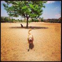 Foto scattata a Stapleton Dog Park da Dougbert H. il 6/4/2013