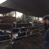 Photo taken at komutanın çiftliğinde by ümit T. on 11/25/2016