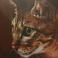 Photo taken at Muzium Kucing (Cat Museum) by Muhammad Faiz M. on 11/22/2016
