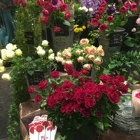 Photo taken at Aoyama Flower Market by Colm S. on 4/24/2016