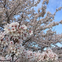Photo taken at 倉掛センター前 by az m. on 4/2/2015