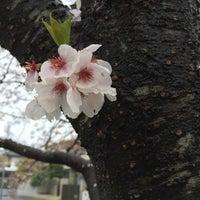 Photo taken at 倉掛センター前 by az m. on 4/4/2015