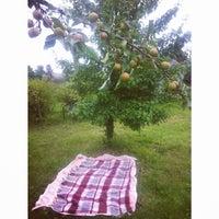 Photo taken at На Свежем Воздухе☀🌿🌳🍡🍢🍴🎶🏡 by Christina P. on 7/30/2015
