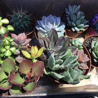 Photo taken at Dolin's Garden Center by Amy R. on 4/8/2017