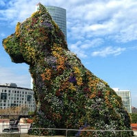 2/21/2013에 Koldo C.님이 Puppy (Guggenheim)에서 찍은 사진
