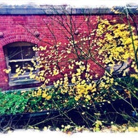 Photo taken at west queen anne elementary by Tim G. on 11/28/2014