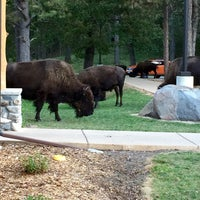 Photo taken at Creekside Lodge by Janelle N. on 9/4/2015