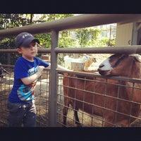 Photo taken at Central Park - Tisch Children's Zoo by Matt S. on 10/5/2012