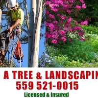 Photo taken at J & A Tree Landscaping Services by Joe P. on 8/10/2014