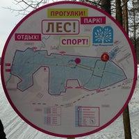 Foto tirada no(a) Мещерский парк por Ekaterina K. em 1/8/2013