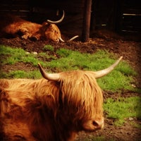 Photo taken at Scotland Highlands by Andrea B. on 8/6/2013