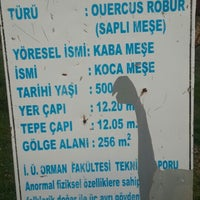 Photo taken at Koca Meşe by Uğur K. on 4/10/2016