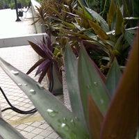Photo taken at Smoking Port by Rashidi Z. on 10/24/2012