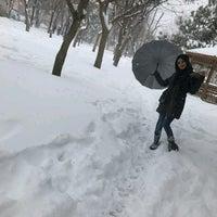 Photo taken at Papatya Parkı by Büşra on 1/11/2017
