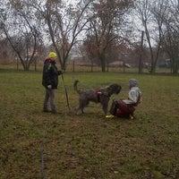 Photo taken at RKKI kutyasuli- Dog Training School by Ildikó A. on 1/19/2014