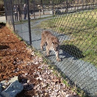 Photo taken at Greater Vancouver Zoo by Valerie C. on 3/4/2013