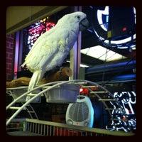 Photo taken at Bel-Port Food & Liquor by Lisa A. K. on 12/13/2012