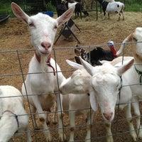 Photo taken at Jenness Farm LLC | Goat Milk Soaps by Jenn S. on 7/13/2013