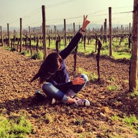 Photo taken at Zenato Winery by Yulia P. on 4/18/2013