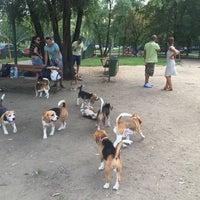 Das Foto wurde bei Площадка для собак и детей von Julia A. am 8/9/2015 aufgenommen