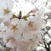 Photo taken at Toneri Park by hiro m. on 3/23/2013