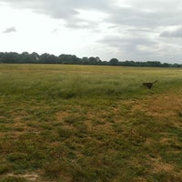 Photo taken at Shelby Farms Dog Park by Nick L. on 5/30/2013