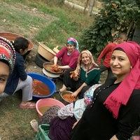 Photo taken at Doğanlı Çiftliği by Merve Ç. on 9/4/2016