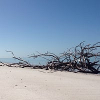 Photo taken at Shell Key Preserve by Fred S. on 2/2/2014