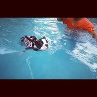 Foto tomada en Sa-by-jai Dog Swimming Pool por PeNg! el 6/14/2014