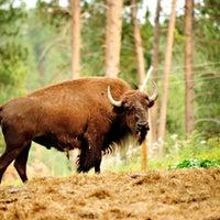 Photo taken at Spirit of the Hills Wildlife Sanctuary by Spirit of the Hills Wildlife Sanctuary on 9/4/2014