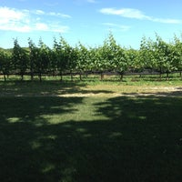 Photo taken at McCall Vineyard by Petro P. on 7/3/2013
